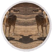 Deer Symmetry  Round Beach Towel