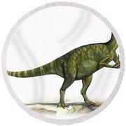 Deinocheirus Mirificus, A Prehistoric Round Beach Towel