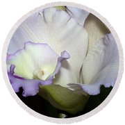 Delicate Purple Orchid Round Beach Towel