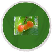 Delicious Plums On The Branch Round Beach Towel