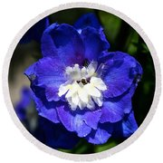 Delphinium Face Round Beach Towel