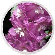 Delphinium Named Magic Fountains Lilac Pink Round Beach Towel