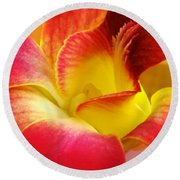 Dendribium Malone Or Hope Orchid Flower Round Beach Towel