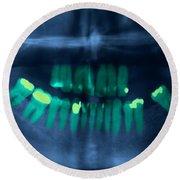 Dental X-ray Round Beach Towel