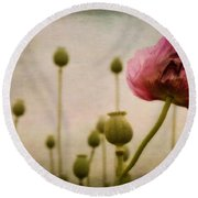 Depth Of Poppy Field Round Beach Towel