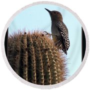 Desert Bird Atop Saguaro Round Beach Towel