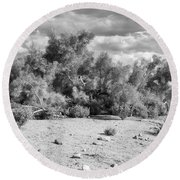 Desert Cloud Bw Palm Springs Round Beach Towel