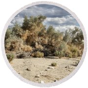 Desert Cloud Palm Springs Round Beach Towel