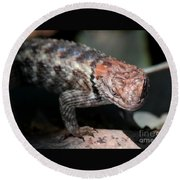 Desert Lizard Round Beach Towel