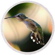 Determined Hummingbird Round Beach Towel