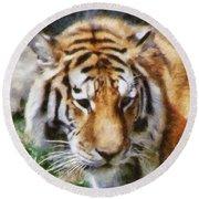 Detroit Tiger Round Beach Towel