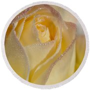 Dew Bejeweled Peace Rose Round Beach Towel