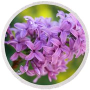 Dewdrops On Lilacs Round Beach Towel