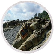 Dinosauer Round Beach Towel