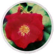 Dirty Rose Knows Round Beach Towel by Bill Cannon