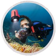 Diver And Anenome Fish Round Beach Towel