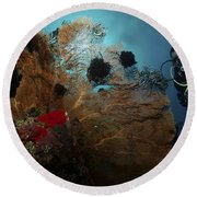Diver And Sea Fan At Liberty Wreck Round Beach Towel