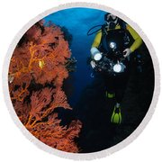 Diver And Sea Fans, Fiji Round Beach Towel