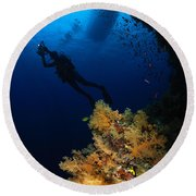 Diver And Soft Coral, Fiji Round Beach Towel