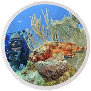 Diver Looks At Scorpionfish Round Beach Towel
