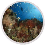 Diver Over Reef Seascape, Indonesia Round Beach Towel