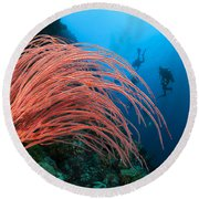 Divers And Whip Coral Round Beach Towel