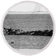 Diving Coney Island In Black And White Round Beach Towel