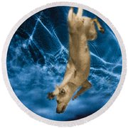 Diving Dog 2 Round Beach Towel