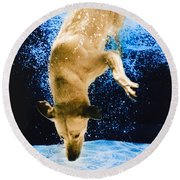 Diving Dog 3 Round Beach Towel