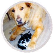 Dog Named Forest And Kitten Named Princess Round Beach Towel