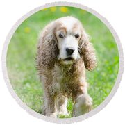 Dog On The Green Field Round Beach Towel