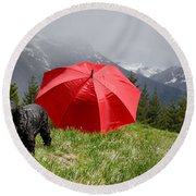 Dog On The Top Of A Mountain Round Beach Towel