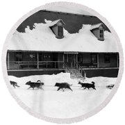 Dog Sled Round Beach Towel