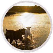 Dogs At Sunset Round Beach Towel by Stephanie McDowell