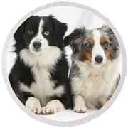 Dogs With Different-colored Eyes Round Beach Towel