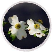Dogwood Blossom - Beelightful Round Beach Towel