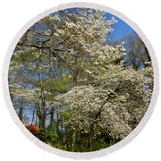 Dogwood Grove Round Beach Towel by Debra and Dave Vanderlaan