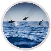 Dolphins Playing In The Ocean Round Beach Towel