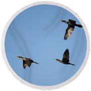 Double-crested Cormorant In Flight Round Beach Towel