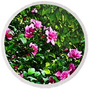 Double Rose Of Sharon Round Beach Towel