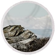 Dozing With Mount Baker Round Beach Towel