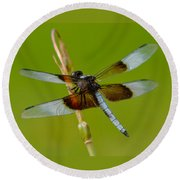 Dragon Fly Green Round Beach Towel