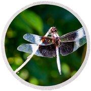 Dragonfly 0002 Round Beach Towel