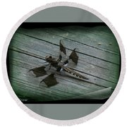 Common Whitetail Dragonfly Round Beach Towel