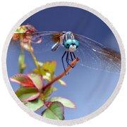 Dragonfly Visit Round Beach Towel