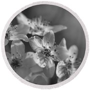 Dreamy Spring Blossoms In Black And White Round Beach Towel