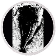 Dried Codfish Back B W Round Beach Towel
