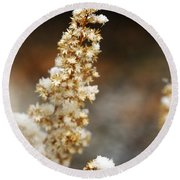 Dried Flower And Crystals Round Beach Towel