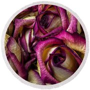 Dried Pink And White Roses Round Beach Towel