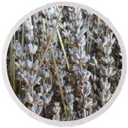 Dried Round Beach Towel by Shannon Grissom